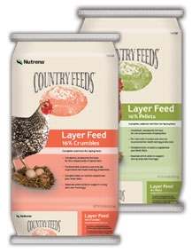 Nutrena® Country Feeds® Layer 16% Pellet Poultry Feed