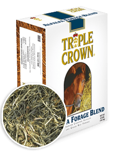 Triple Crown Premium Chopped Alfalfa Forage Blend-40 lbs