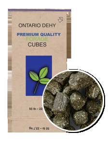 Ontario Dehy Timothy Balance Cubes For Equine Nutrition-50 lbs
