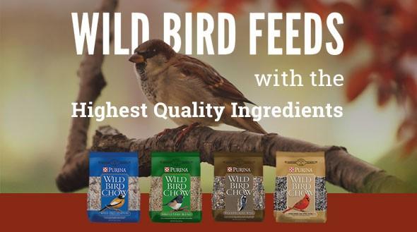 Wild Bird Feeds