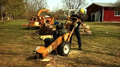Stump Grinder Rental