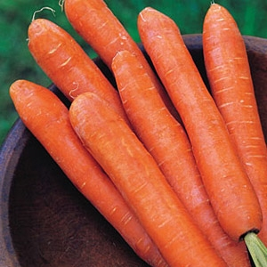 Nantes Carrot Half Long Seed Tape