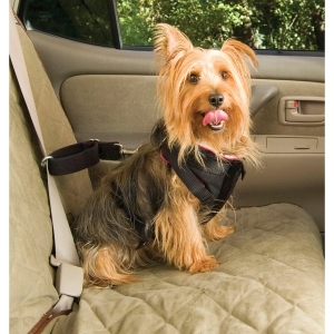 Vehicle Safety Harness Small