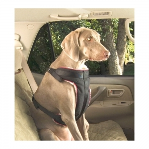 Vehicle Safety Harness extra large
