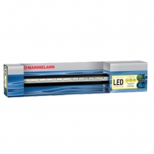 Hidden Led Lighting System