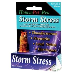 Storm Stress Feline