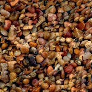 Estes Shallowcreek Pebble Aquarium Gravel