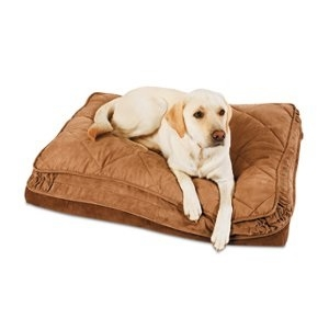 Petmate Bolstered Orthopedic Dog Bed