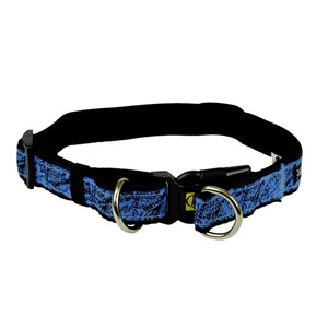 Body Glove Pet Double D-Ring Neoprene Collar