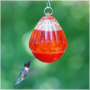 Perky Pet® Round Glass Hummingbird Feeder
