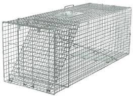 Havahart Trap (large)