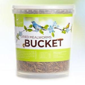 Pacific Bird® Dried Mealworm Bucket