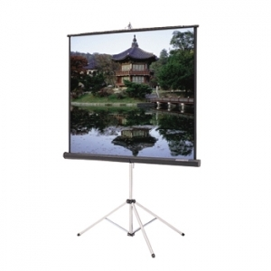"Da-Lite 60"" x 60"" Projection Screen"