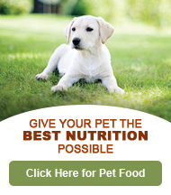 Pet Food Nutrition
