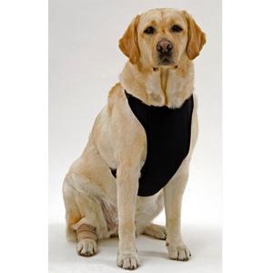 Kumfy Tailz Warming/Cooling Mesh Harness
