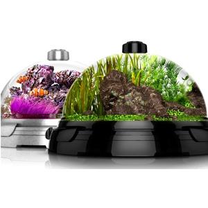 Bio Bubble Dome Fish Tank