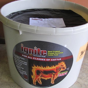 Ignite Cattle Feed