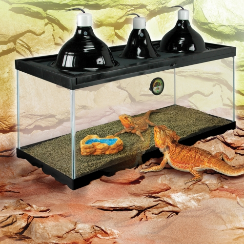 Zilla Deluxe Bearded Dragon Kit 32