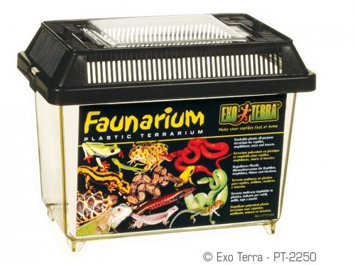 Exo Terra Faunarium-Mini