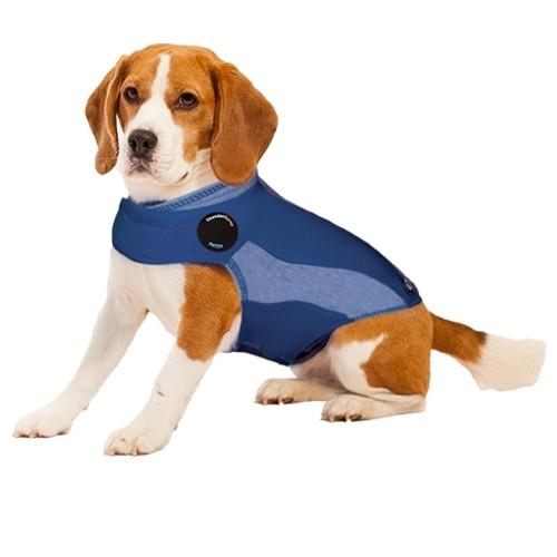 XL Blue Polo Thundershirt
