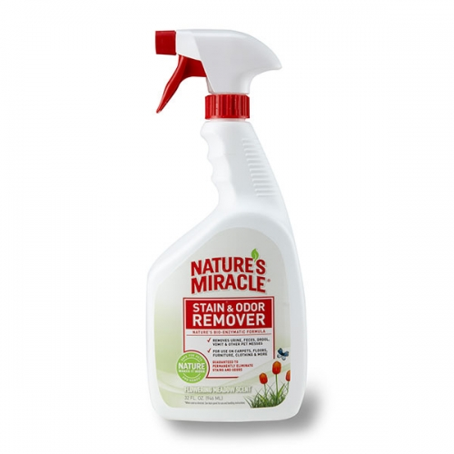 Stain & Odor Remover - Lemon Orchard Scent