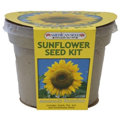 Mammoth Russian Sunflower Seed Kit