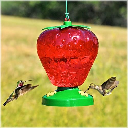 Perky-Pet® Plastic Strawberry Hummingbird Feeder