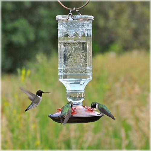 Perky-Pet® Clear Antique Glass Bottle Hummingbird Feeder