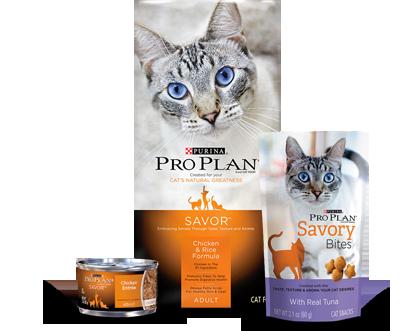 Purina® Pro Plan® SAVOR® Cat Food and Treats