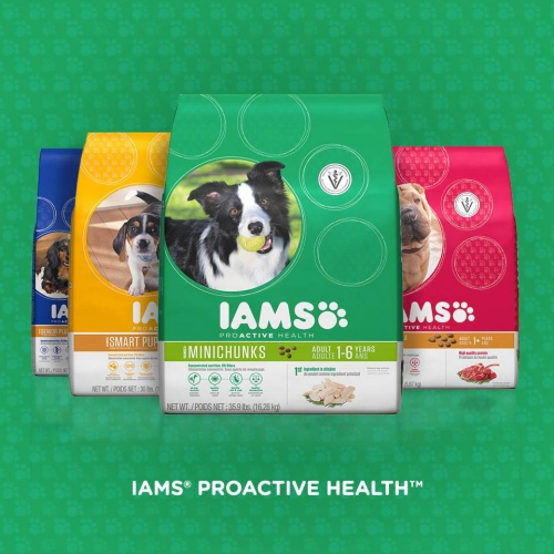 Iams Pet Food and Treats