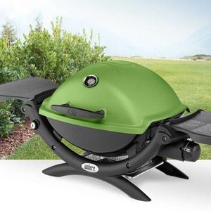 Weber® Q-1200 Green Gas Grill
