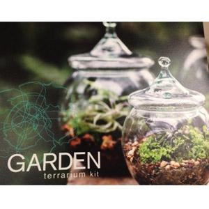 Garden Terrarium Hanging Sphere Kit