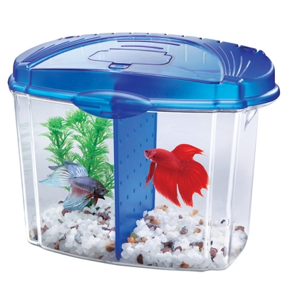 Betta Bowl™ Mini Bow™ Desktop Aquarium Kit