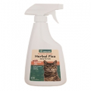 do both male and female cats spray