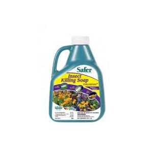 Safer Insect Killing Soap Concentrate 16oz