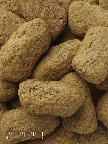 Mazuri Primate Growth & Repro Biscuit