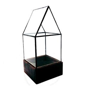 LeadHead Cape Cod Glass Terrarium