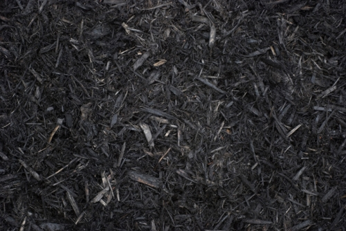 Cedar Mulch - Black Dyed