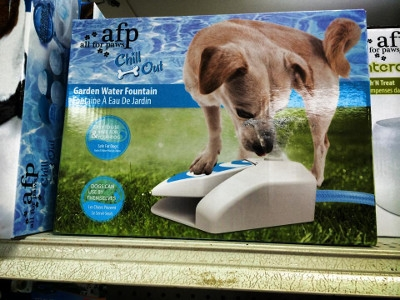 All For Paws Chill Out Garden Water Fountain