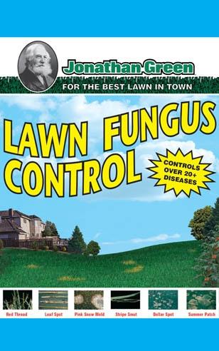 Lawn Fungus Control