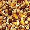 Moyer's Purgrain European Supreme 16% SYC Pigeon Feed
