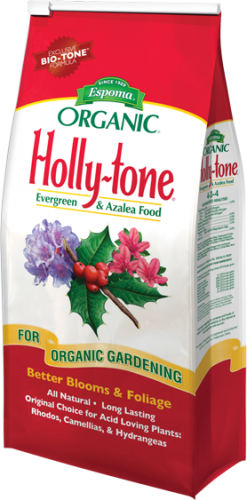 Holly-tone 4-3-4