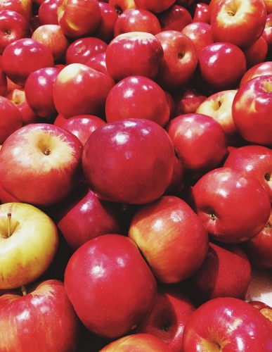 New York State Apples