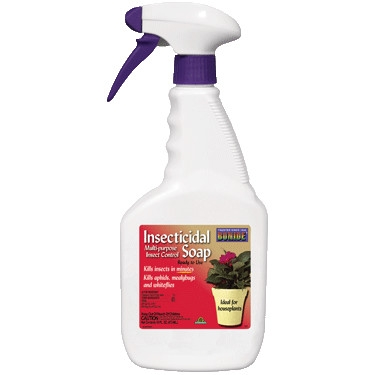Insecticidal Soap, RTU