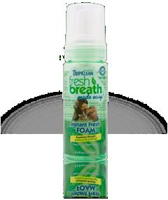 Fresh Breath Instant Fresh Mint Foam