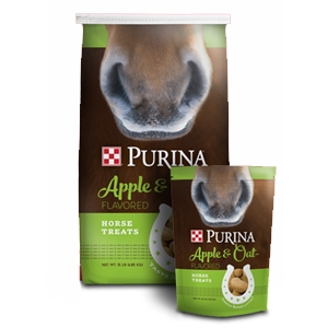 Purina Horse Treats Apple & Oat Flavored for Dogs