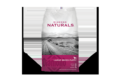 Diamond Naturals Large Breed Lamb & Rice Puppy Food - 40 lbs.