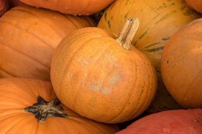 Fall Decorating Fun!