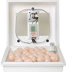 Little Giant Circulated Air Incubator With Fan