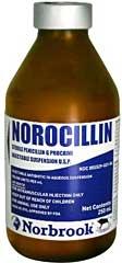 250ML Penicillin